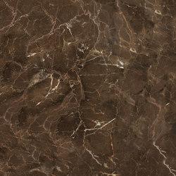 Anima Fuori Gamma Naturale | Dark Emperador | Ceramic panels | Caesar