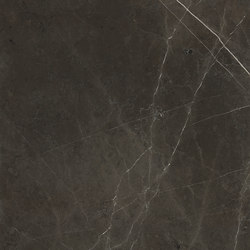 Anima Fuori Gamma Naturale | Graphite | Platten | Caesar