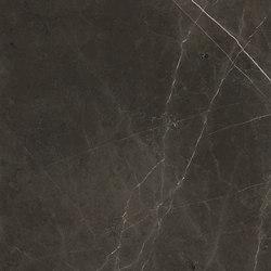 Anima Fuori Gamma Naturale | Graphite | Keramik Platten | Caesar
