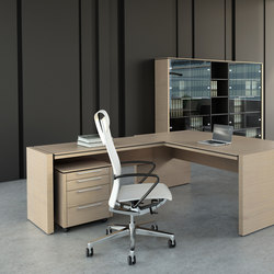 Status | Executive desks | MDD