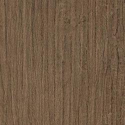 Bord Cinnamon | Tiles | Atlas Concorde