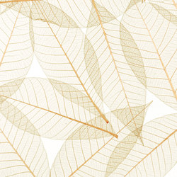 Charisma Glass Toffee Leaf | Vidrios decorativos | complexma