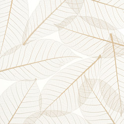 Charisma Glass Natural Leaf | Vidrios decorativos | complexma