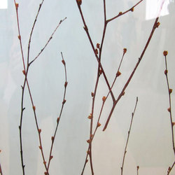 Charisma Glass Birch Branch | Verre décoratif | complexma
