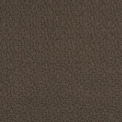 Dumas 2615-03 | Tessuti | SAHCO