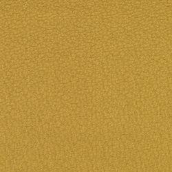 Dumas 2615-10 | Fabrics | SAHCO