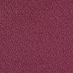 Dumas 2615-13 | Fabrics | SAHCO