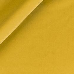 Hudson 2020-49 | Fabrics | SAHCO