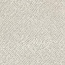 Melampo 2547-02 | Stoffbezüge | SAHCO