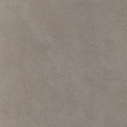 Basic Ashgrey | BA6060A | Piastrelle/mattonelle per pavimenti | Ornamenta