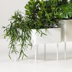 Rombo | Contenore / Vasi per piante | Cascando