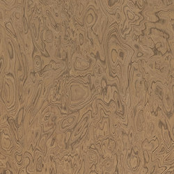 ALPIlignum Elm Burl 10.05 | Placages | Alpi