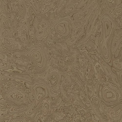 ALPIlignum Walnut Burl 10.07 | Placages | Alpi