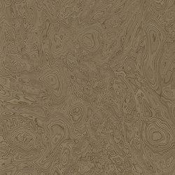 ALPIlignum Walnut Burl 10.07 | Piallacci | Alpi