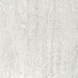 ALPIlignum Pure White Erable 10.09 | Wand Furniere | Alpi