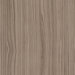 ALPIlignum Wavy American Walnut 10.19 | Placages | Alpi