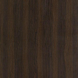 ALPIlignum Smoked Oak 10.85 | Wand Furniere | Alpi