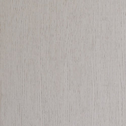 ALPIlignum Ivory Oak 10.81 | Placages | Alpi