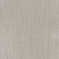 ALPIlignum Sahara Sand Oak 11.01 | Placages | Alpi