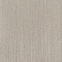 ALPIlignum Clay Oak 11.03 | Wand Furniere | Alpi