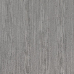 ALPIlignum Steady Dove Grey Oak 11.05 | Wand Furniere | Alpi