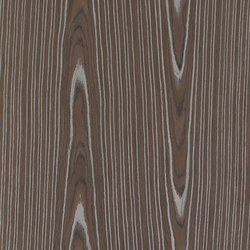 ALPIlignum Crown Bark 13.01 | Veneers | Alpi