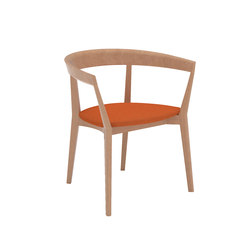 Carola SO 0908 | Chaises de restaurant | Andreu World