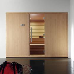 Gym 300 | Saunas | Effegibi