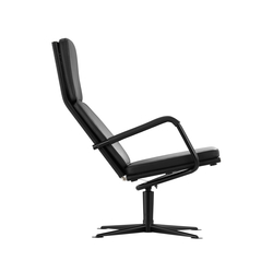 D37 Swivel lounge chair | Sillones lounge | TECTA