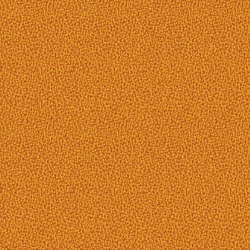 Aquarius Zippy | Fabrics | Camira Fabrics