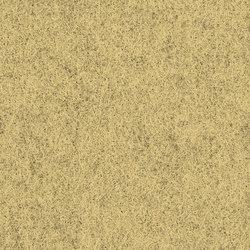 Blazer Bath | Tessuti | Camira Fabrics