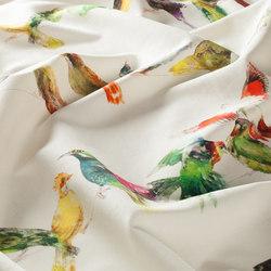 BIRDSONG CH2718/030 | Drapery | Chivasso