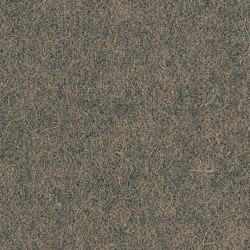 Blazer Trevelyan | Upholstery fabrics | Camira Fabrics