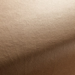 BOXTER CA1038/073 | Artificial leather | Chivasso