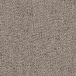 Blazer Lite Tender | Wall fabrics | Camira Fabrics