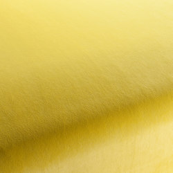 CITY VELVET VOL.2 CA7832/042 | Fabrics | Chivasso
