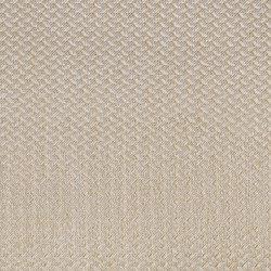 Alerion DIMOUT | 1551 | Curtain fabrics | DELIUS