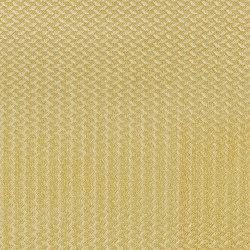 Alerion DIMOUT | 2551 | Curtain fabrics | DELIUS