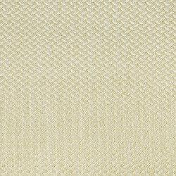 Alerion DIMOUT | 2552 | Tejidos para cortinas | DELIUS