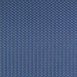 Alerion DIMOUT | 5551 | Curtain fabrics | DELIUS