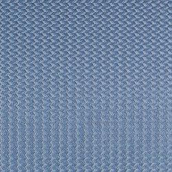Alerion DIMOUT | 5553 | Curtain fabrics | DELIUS