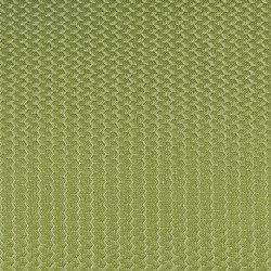 Alerion DIMOUT | 6550 | Tejidos para cortinas | DELIUS