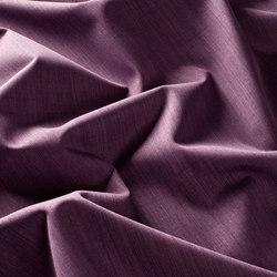 BLACKNESS 1-6710-081 | Tejidos para cortinas | JAB Anstoetz