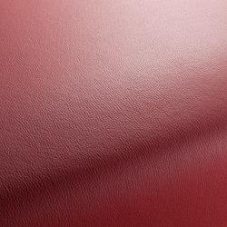 MERCURY CA7933/010 | Artificial leather | Chivasso