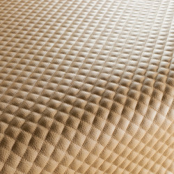 STARLET CA1130/070 | Kunstlederbezüge | Chivasso