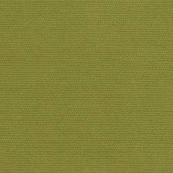 Halcyon Poplar Evergreen | Upholstery fabrics | Camira Fabrics