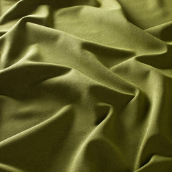 WILLIAM VOL. 2 1-6699-031 | Fabrics | JAB Anstoetz