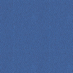 Lucia Bluefield | Tessuti per pareti | Camira Fabrics