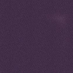 Lucia Tarot | Tessuti per pareti | Camira Fabrics
