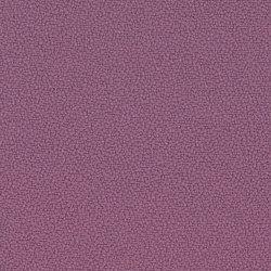 Lucia Bridgetown | Tessuti per pareti | Camira Fabrics